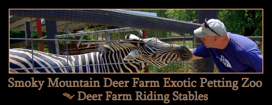 Smoky Mountain Deer Farm and Exotic Zoo